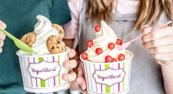 YogurtlandFeedback